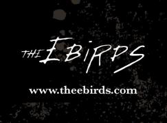 The Ebirds